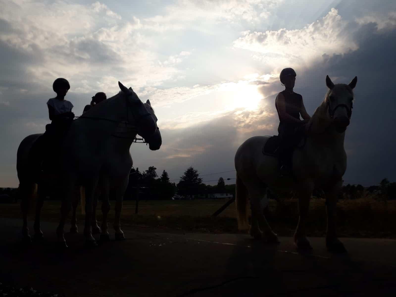 Merry Legs Ranch bietet Reitunterricht und Ausritte für Kinder, Jugendliche und Erwachsene auf gut ausgebildeten Pferden in familiärer Atmosphäre an.